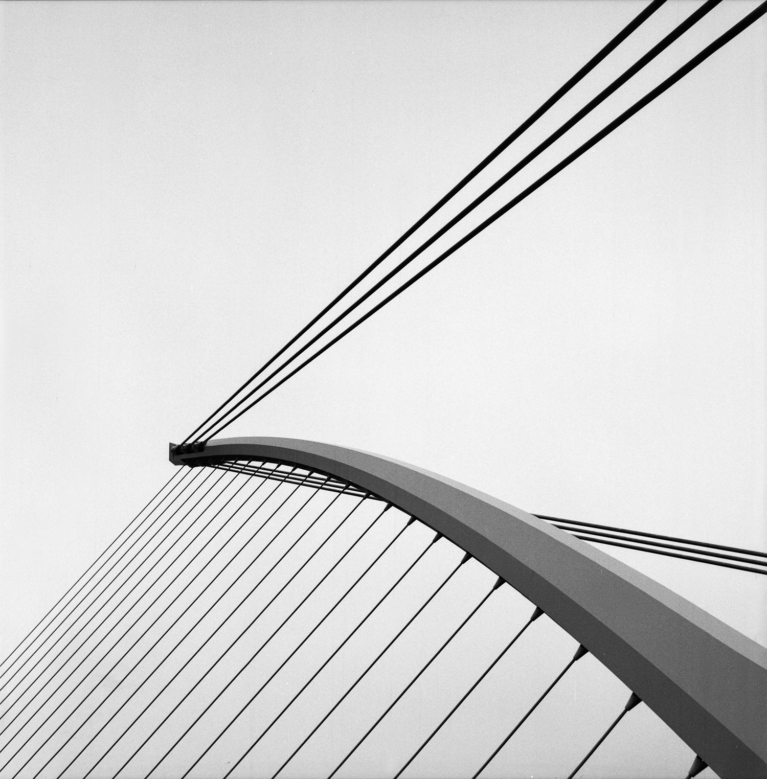 Samuel Beckett's Bridge, Dublin by David Hatters